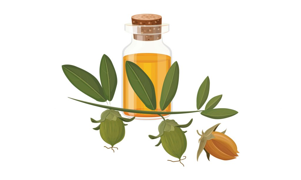 13 Benefits of Jojoba Oil for Face and Skin
